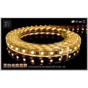 12V5050黏片LED高亮度軟條燈(正白光高亮款)