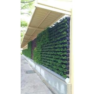 植栽-造籬有限公司