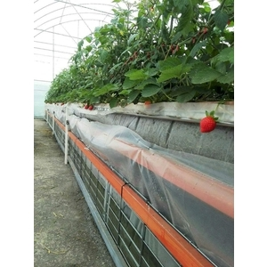 水耕蔬菜塑膠布