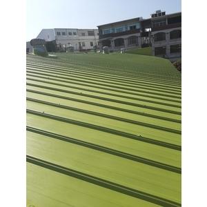 鐵皮浪板鋼構除銹噴漆-全成油漆工程行