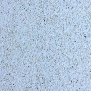 石材-海貝石鑿斬岩