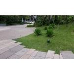 內湖社區庭園照景