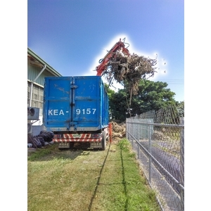 樹木修剪、清運-兆美還淨工程有限公司