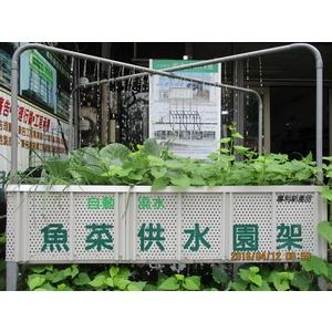 魚菜供水園架