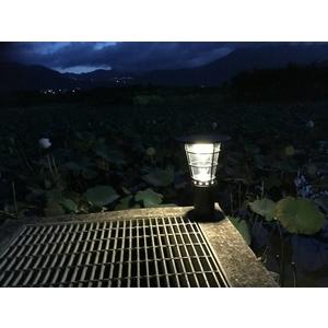 高亮度太陽能景觀庭園燈 38公分高3