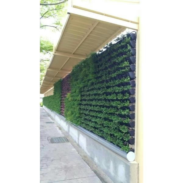 植栽-造籬有限公司-新北