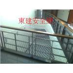 天井安全網