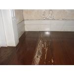 除白蟻-柚木地板
