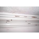 除白蟻-天花板邊條