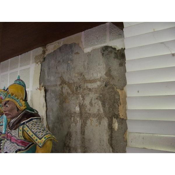 除白蟻-水泥牆壁紙