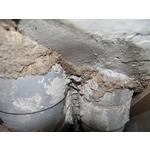 除白蟻-排水管路