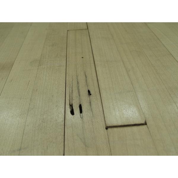 除白蟻-楓木地板