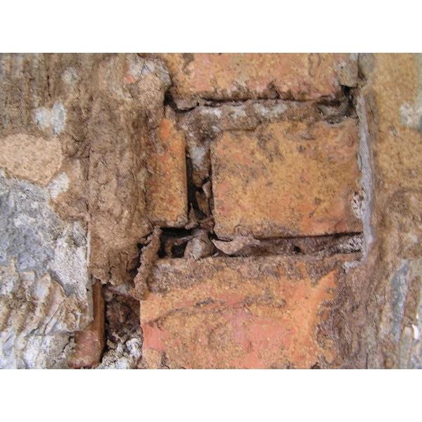 除白蟻-磚牆縫隙