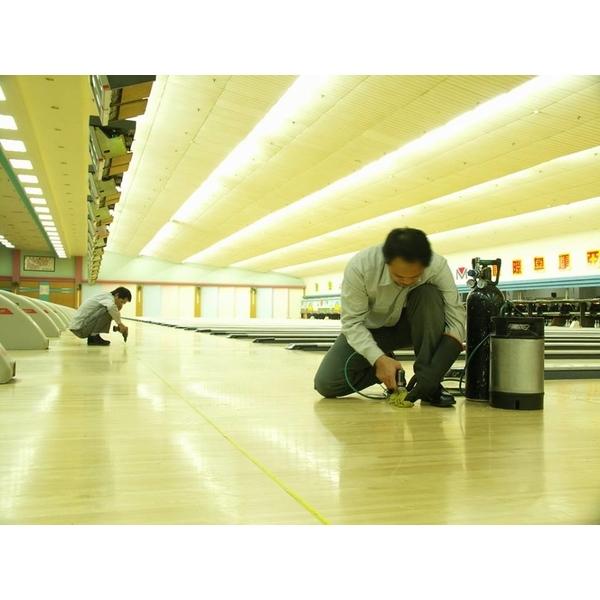 白蟻防治施工-保固除蟲消毒有限公司-台南