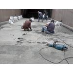 坡道打除運棄+瀝青鋪設+標線工程-pic5