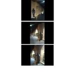 莎多堡汽車旅館(台北市中山區) 黑武士柵欄機