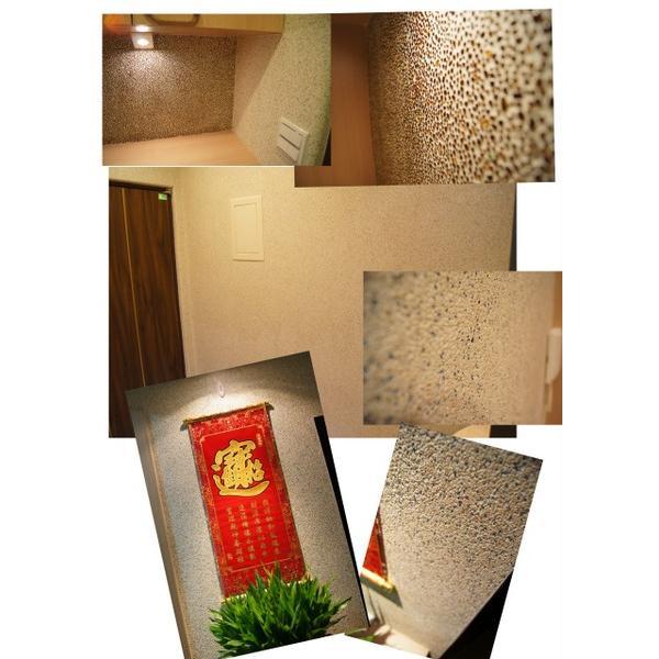 林宅室內牆面抿石-大項企業社-新北