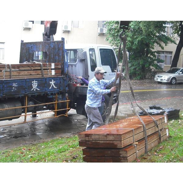 婆羅洲鐵木