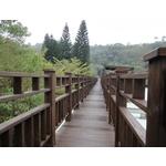 南方松棧道、欄杆