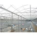 力霸溫室-綠能溫室工程有限公司:彰化溫室規劃,溫室設計,溫室建造,溫室搭建