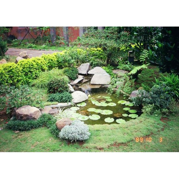 平地式水池