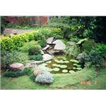 平地式水池-庭園維護,景觀設計,綠化工程,室內造景-柏澄園藝景觀養護工程公司