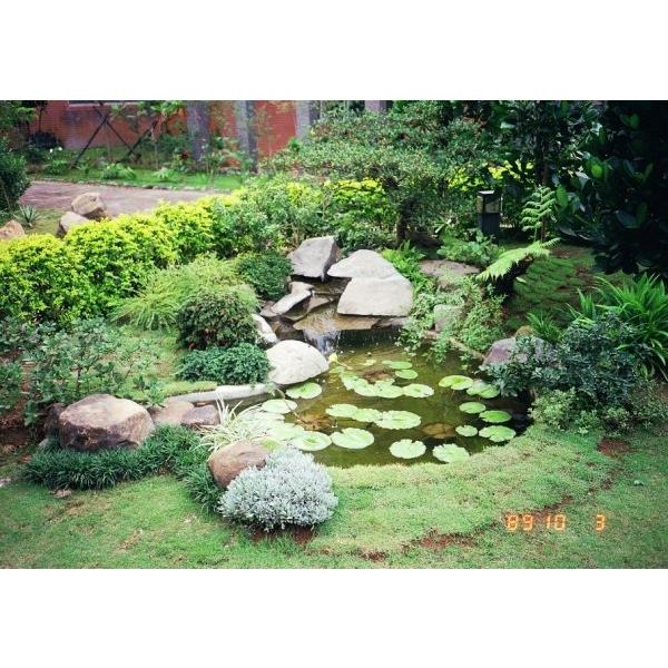 景觀-平地式水池-柏澄園藝景觀養護工程公司-新北