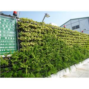 造型綠牆-宅良工程有限公司-新北