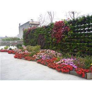 景觀植生牆