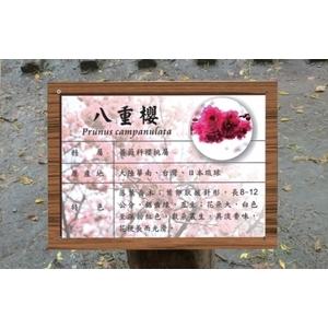 公園植物標示牌
