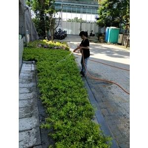園藝工程05