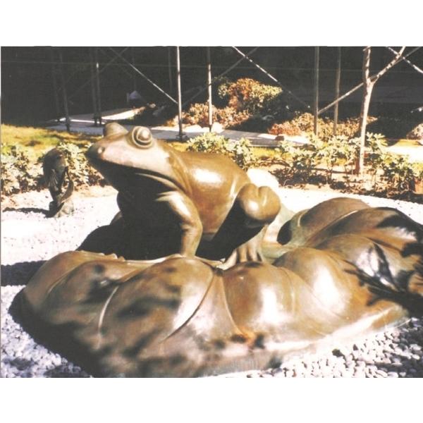 青蛙-丞軒國際有限公司-桃園