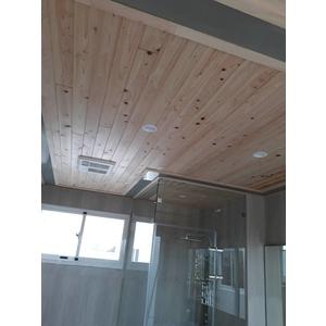 浴室天花板