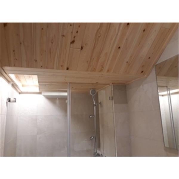 浴室天花板-喜之木貿易有限公司-台北