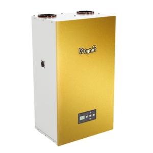 即熱式瓦斯熱水器-新碩水電有限公司-新北