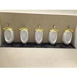 廁所新建-pic6