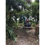 鋸樹整地新建工程