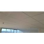 豹紋礦籤天花板