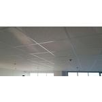 豹紋礦籤天花板-pic2
