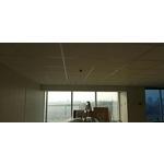 豹紋礦籤天花板-pic4