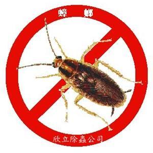 除蟑螂服務