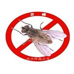 蒼蠅消毒服務