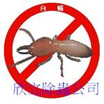白蟻| 除白蟻| 防治白蟻