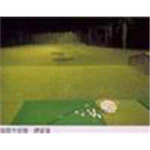 高爾夫練習草墊-亮盟實業股份有限公司-苗栗