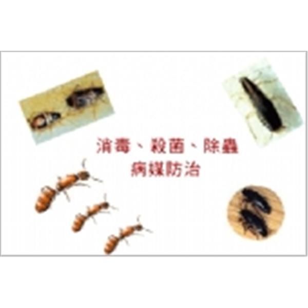 消毒.除蟲.病媒防治-東昇清潔工程有限公司-台北