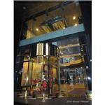 高雄維士比大樓門廳不銹鋼造型門窗工程