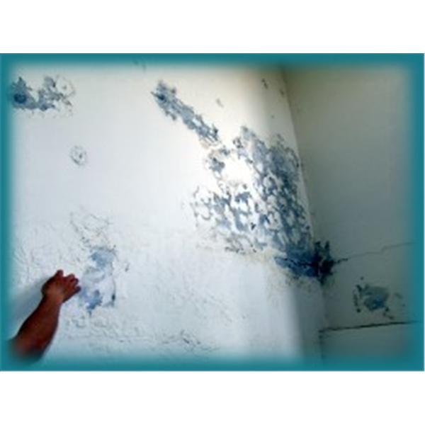 壁癌處理-上銘防水工程有限公司-彰化