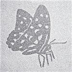 客製化藝術噴砂磚 (4)