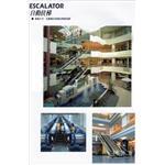 自動扶梯1