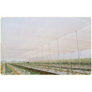 農業用網-網室防蟲網-欣隆製網股份有限公司-彰化